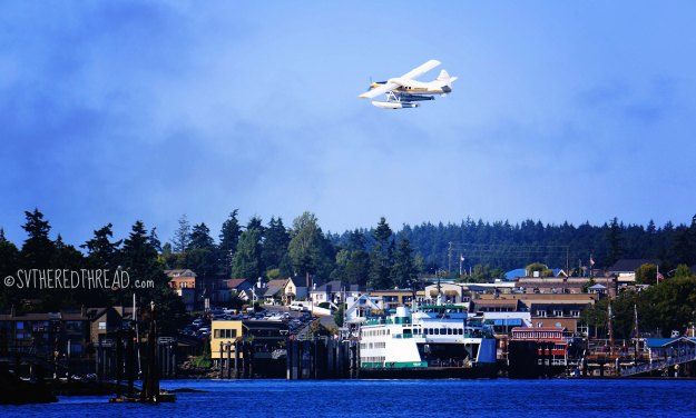 Friday Harbor_Sea plan soaring