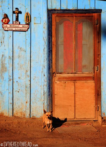 #Bahia de Tortugas_Ay chihuahua