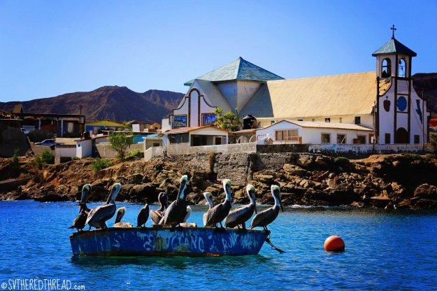 #Bahia de Tortugas_Pelican church
