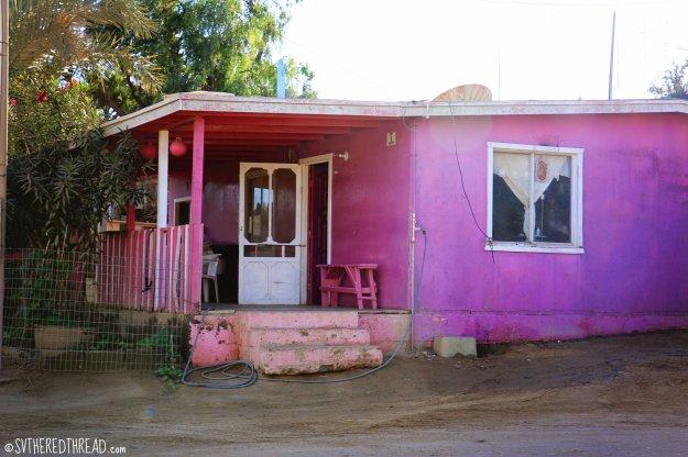 #Bahia de Tortugas_Pink houses