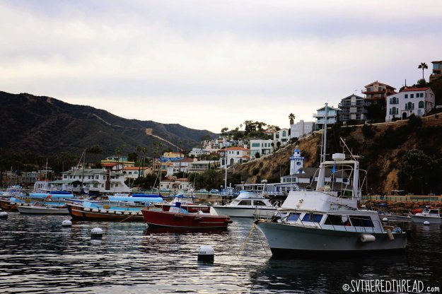 #Catalina_Avalon boats