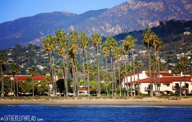 #Santa Barbara_Palms