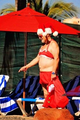 #Feliz Navidad_Tropical Santa