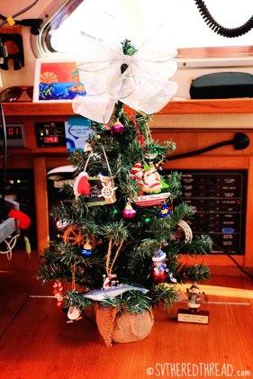 #Mazatlan_Christmas tree