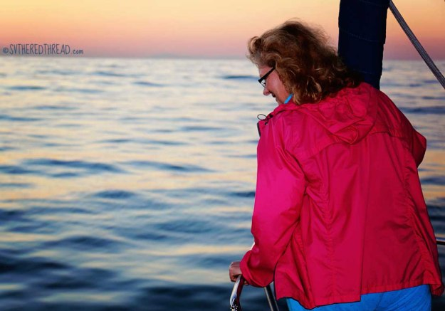 #Passage to Chacala_Dawn dolphin watching