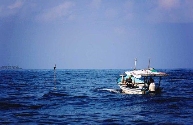 #Passage to Manzanillo_Long liners