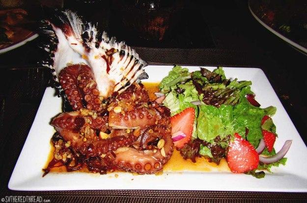 #Chiapas_Amazing octopus