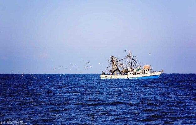 #Passage to Chiapas_Fishing boat