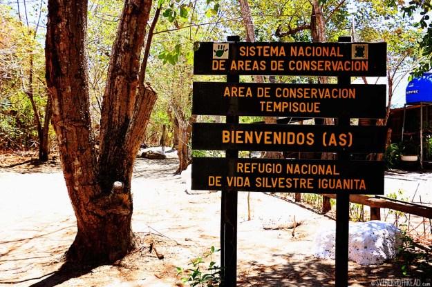 #Bahia Iguanita_Bienvenidos