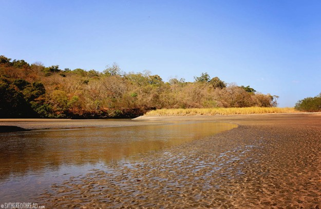 #Bahia Iguanita_Iguanita estuary