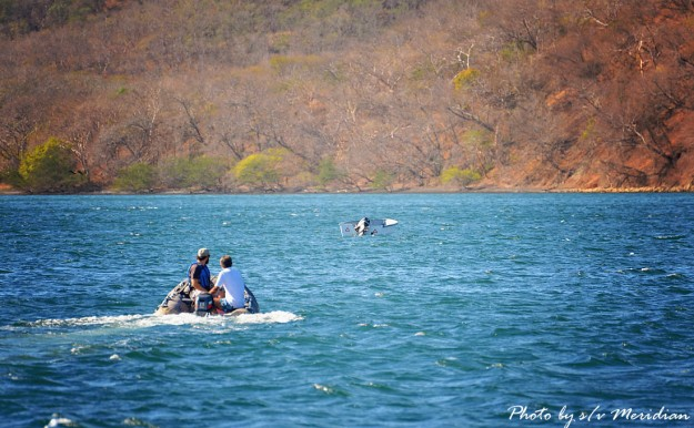#Bahia Iguanita_Runaway panga