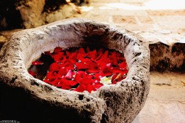 #Antigua_Santo Domingo_Rose petal font