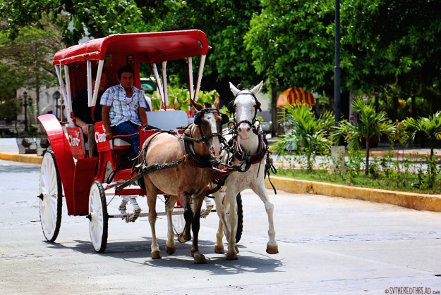 #Granada_Carriage rides