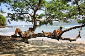 #Ballena beach_Tree of kings