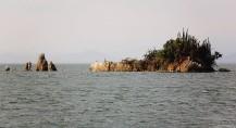 #Isla San Lucas to Jesusita y los Cedros_Rocky islet1