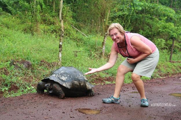 #Isla Santa Cruz_Highland tortoise + Lori