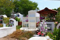 #Isla Santa Cruz_Puerto Ayora_Cemetery