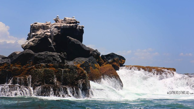 #Isla Isabela_Los Tunneles_A crag off the coast