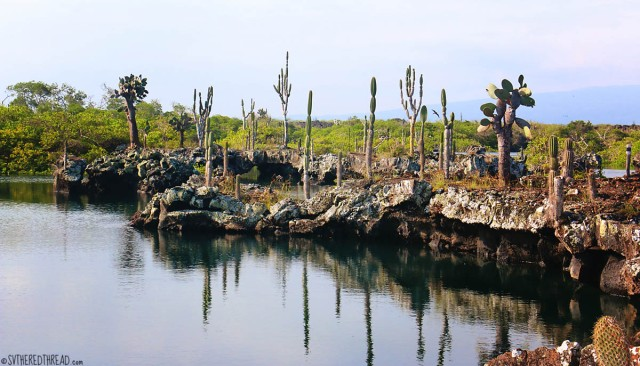 #Isla Isabela_Los Tunneles_The landscape1