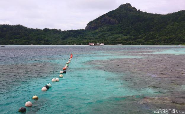 gambiers_maroi-pearl-farm_buoys