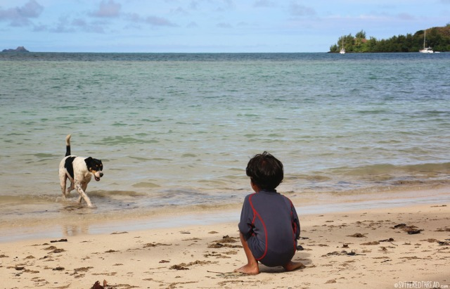 taravai-gambiers_a-boy-and-his-dog