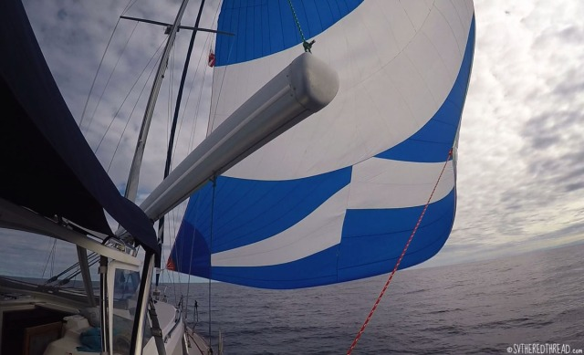 gambiers-to-australs_spinnaker-sailing