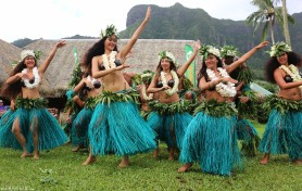 #PPJ party_Polynesian flair