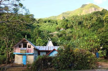#Moorea_Tropical jungle