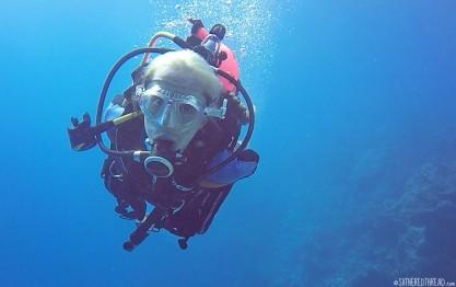 #Bora Bora_Scuba Jess2
